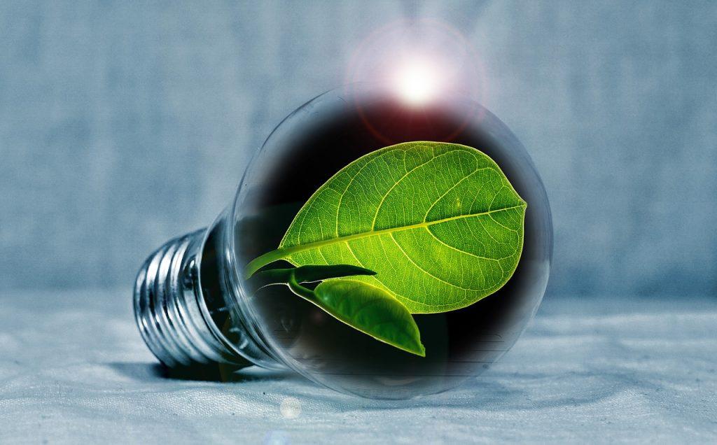 greener building services